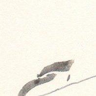 knochenwasserfisch logo